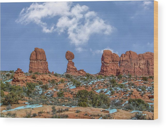 Arches National Park Wood Print featuring the photograph Arches National Park 3 by Tommy Anderson