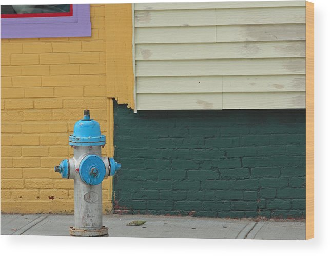 Ar;ington Wood Print featuring the photograph Arlington Hydrant by Art Ferrier