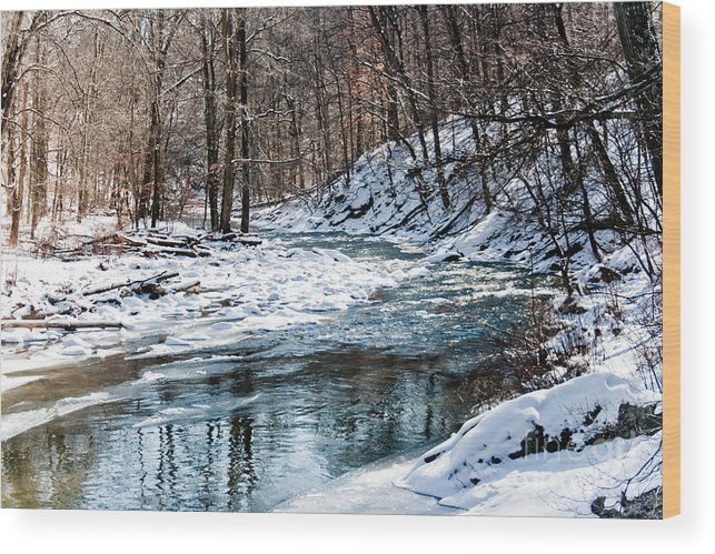 Nature Wood Print featuring the photograph Around The Snow Bend by Robin Lynne Schwind