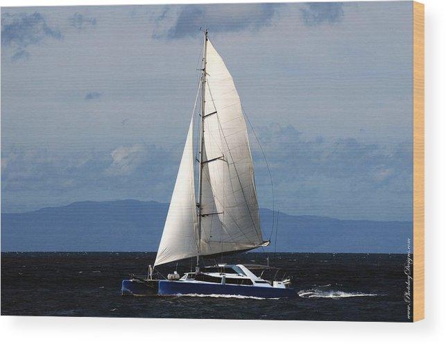 Australia Wood Print featuring the photograph Australia Gbr 2484 by PhotohogDesigns