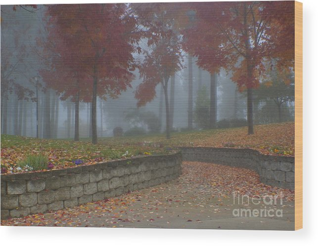Autumn Wood Print featuring the photograph Autumn Fog by Idaho Scenic Images Linda Lantzy
