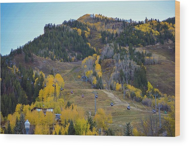 Colorado Wood Print featuring the photograph Autumn In Aspen by Livia Pavelescu