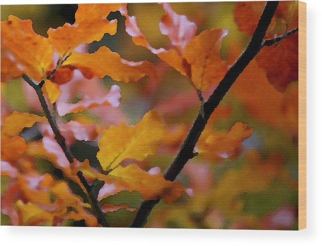 Leaves Wood Print featuring the painting Autumn by Mary Gaines