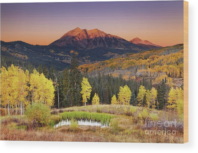 America Wood Print featuring the photograph Autumn Mountain Landscape, Colorado, Usa by Dmitry Pichugin
