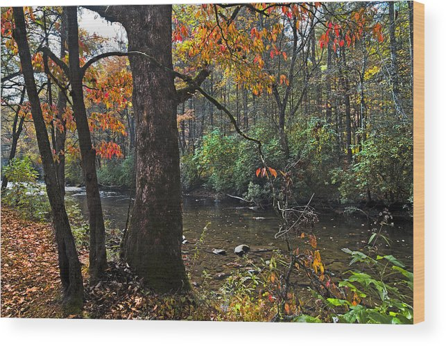 Appalachia Wood Print featuring the photograph Autumn Mountains by Debra and Dave Vanderlaan
