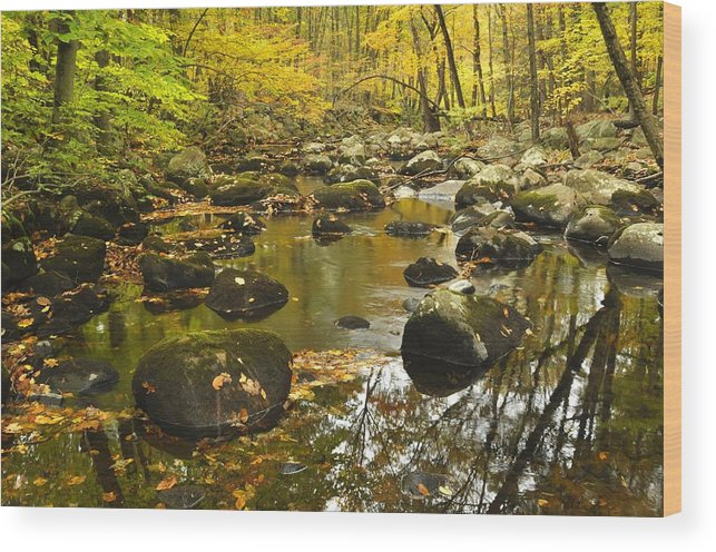 Autumn Wood Print featuring the photograph Autumn Stream Reflections by Stephen Vecchiotti