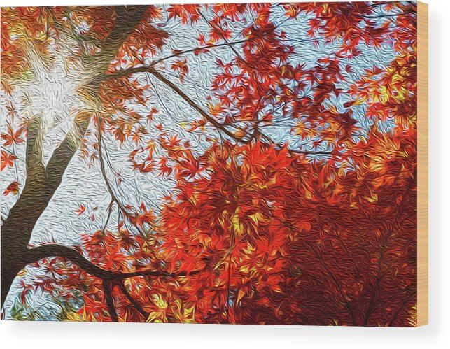 Abstract Wood Print featuring the digital art Autumn Sun by Les Cunliffe