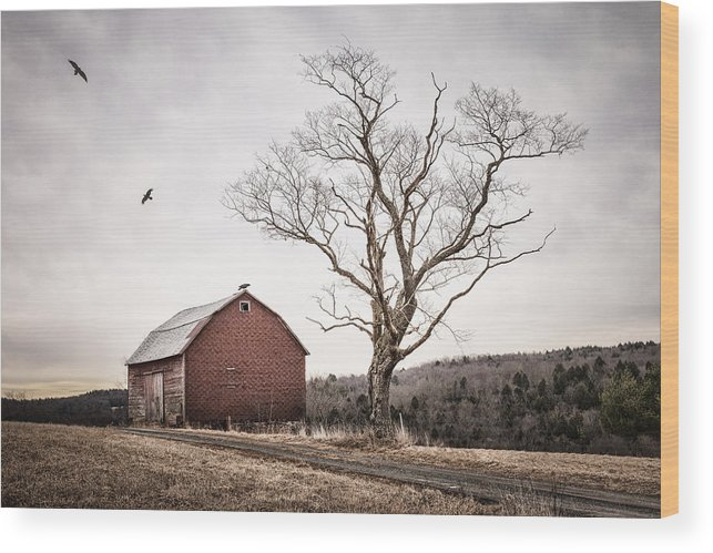 Barns Wood Print featuring the photograph barn and tree - New York State by Gary Heller