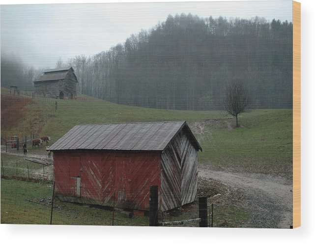 Barn Wood Print featuring the photograph Barn At Stecoah by Kathy Schumann
