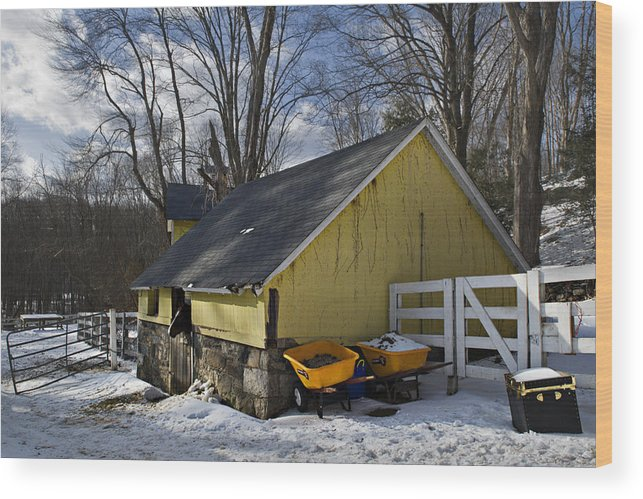 Horse Wood Print featuring the photograph Barn In Winter by Jack Goldberg