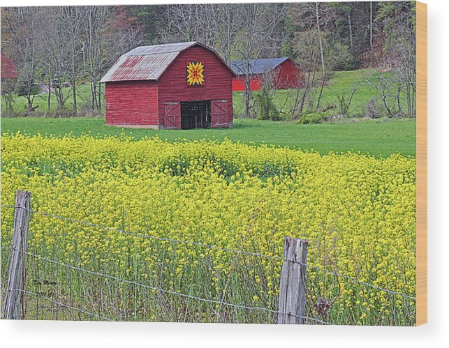 Nature Wood Print featuring the photograph Barnyard Quilt by Ken Merop
