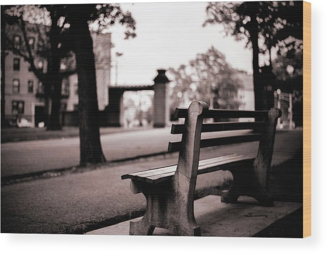 Hudson County Park Wood Print featuring the photograph Bayonne New Jersey by Don Gronczewski