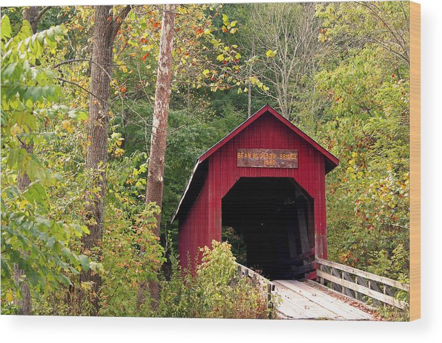 Covered Bridge Wood Print featuring the photograph Bean Blossom Bridge II by Margie Wildblood