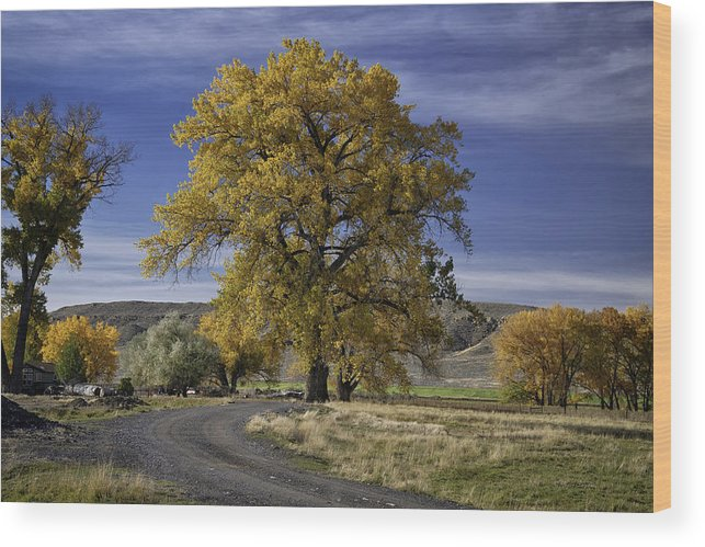 Beautiful Photos Wood Print featuring the photograph Belfry Fall Landscape 5 by Roger Snyder