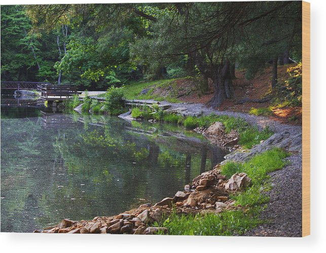 Trail Wood Print featuring the photograph Beside The Still Water by Darlene Bell