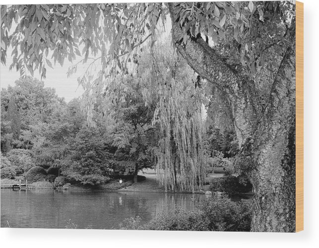Lake Wood Print featuring the photograph Black And White Tranquility by Rodger Mansfield