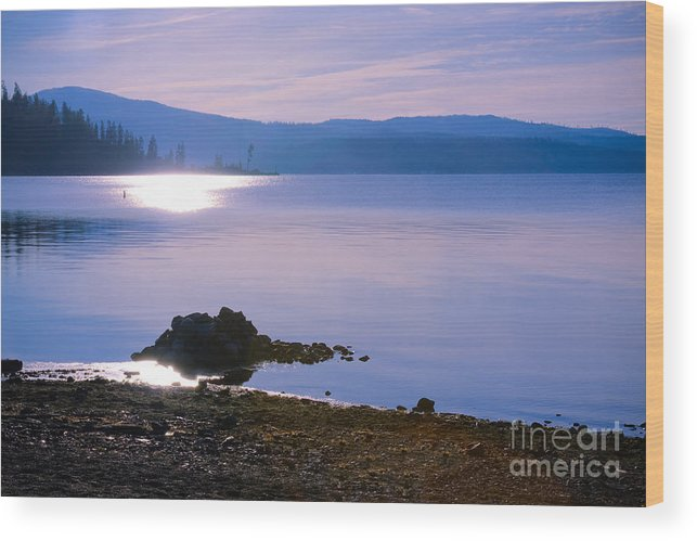 Blue Wood Print featuring the photograph Blue Contemplation by Idaho Scenic Images Linda Lantzy