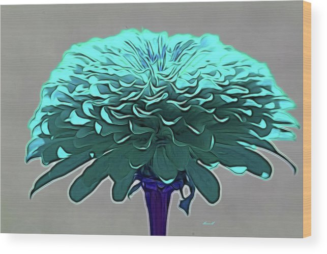 Flower Art Wood Print featuring the photograph Blue Crown by Dennis Baswell
