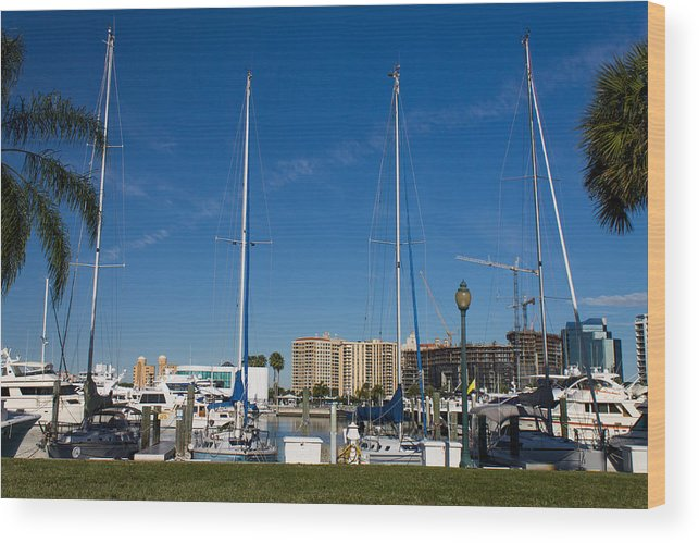 Marina Jacks Wood Print featuring the photograph Boater's Paradise by Michael Tesar