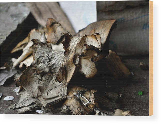Book Wood Print featuring the photograph Book Burnning by Shannon Nickerson
