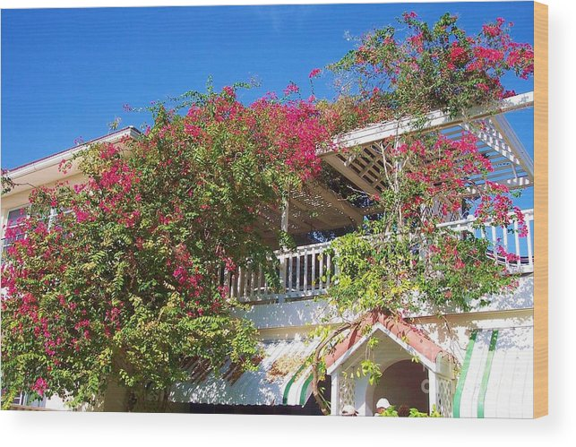 Flowers Wood Print featuring the photograph Bougainvillea Villa by Debbi Granruth