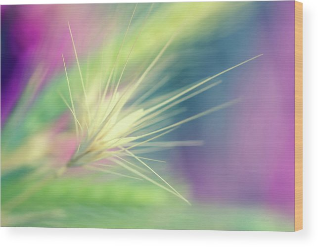 Bright Colors Wood Print featuring the digital art Bright Weed by Terry Davis