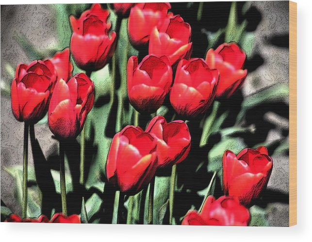 Red Wood Print featuring the photograph Brilliant Tulips Dp22 by Mary Gaines