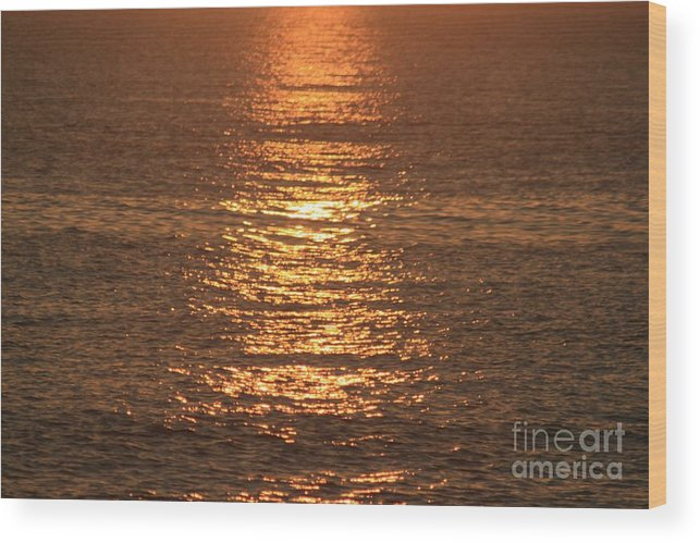 Ocean Wood Print featuring the photograph Bronze Reflections by Nadine Rippelmeyer