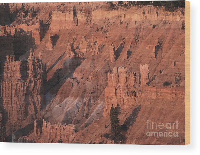 Utah Wood Print featuring the photograph Bryce Canyon At The Golden Hour by Stan and Anne Foster