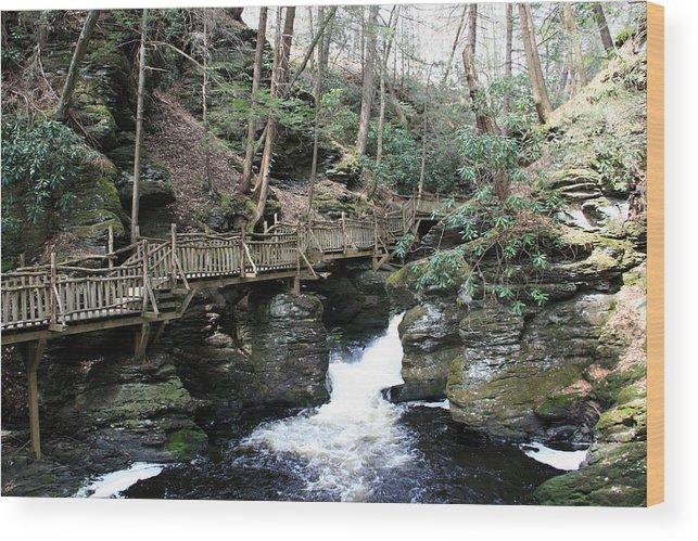 Bushkill Falls Wood Print featuring the photograph Bushkill Falls Boardwalk 1 by George Jones