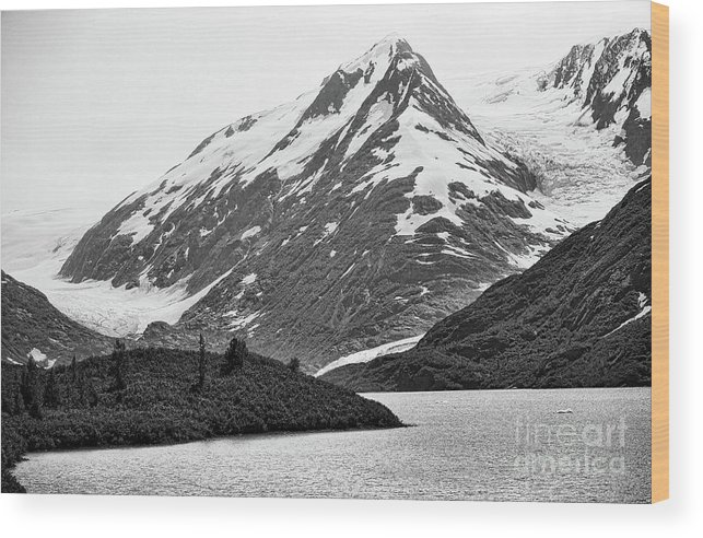 Alaska Wood Print featuring the photograph Bw Glacier Alaska by Chuck Kuhn