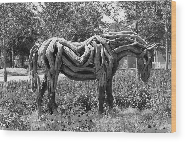 150 Wood Print featuring the photograph Bw Of Odyssey The Horse Sculpture Made Of Driftwood By Heather Jansch. by Bob Corson