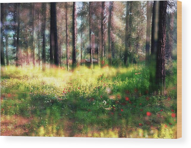 Impressionistic Wood Print featuring the photograph Cabin In The Woods In Menashe Forest by Dubi Roman