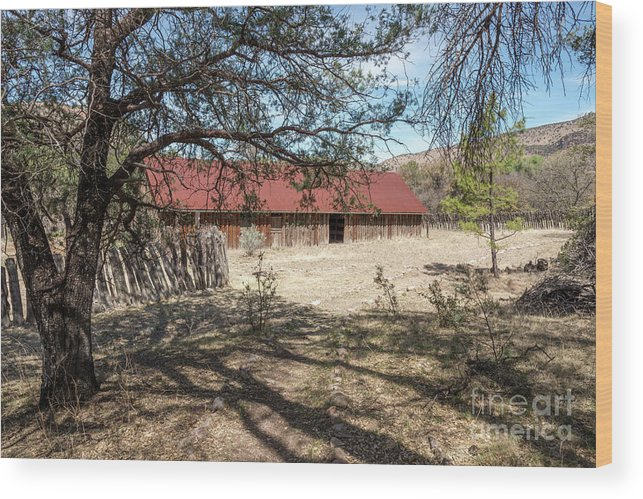 Abandoned Wood Print featuring the photograph Camp Rucker Barn 2 by Al Andersen