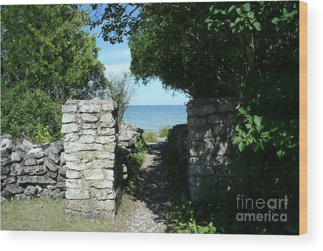 Cana Island Wood Print featuring the mixed media Cana Island Walkway Wi by Tommy Anderson