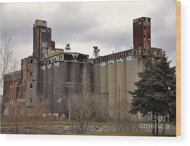 Canada Malting Plant Wood Print featuring the photograph Canada Malting Plant 2 by Reb Frost