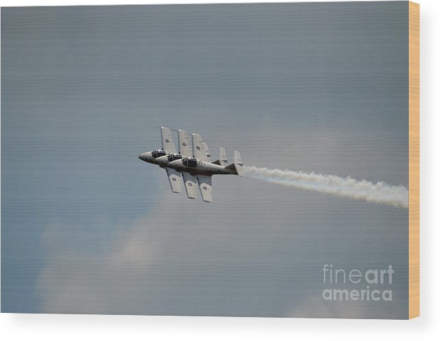 Canada Snowbirds Wood Print featuring the photograph Canada Snowbirds by Sheila Lee