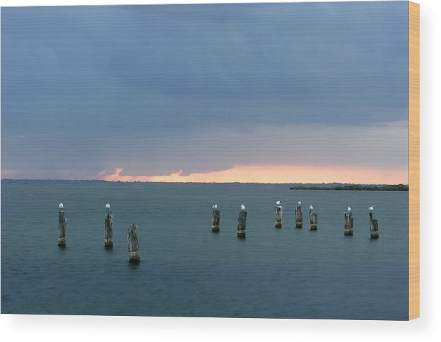 Florida Wood Print featuring the photograph Canaveral Sunset by Eric Foltz