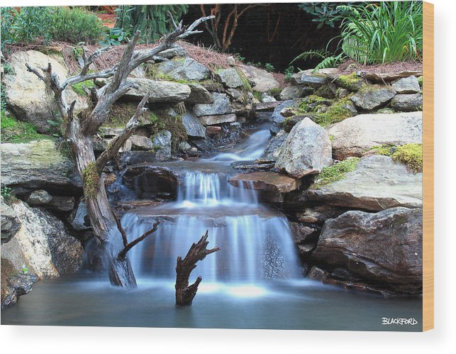 North Carolina Wood Print featuring the photograph Carolina Mountain Stream by Al Blackford