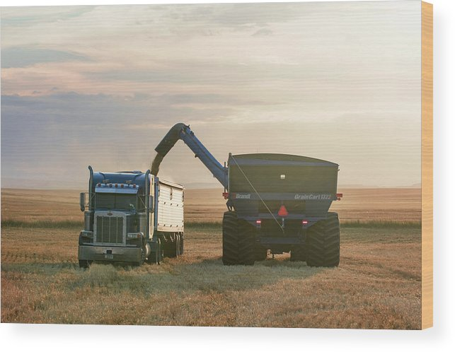 Valier Wood Print featuring the photograph Cart Into Truck by Todd Klassy