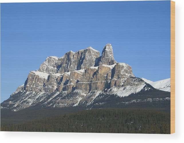 Cascade Mountain Wood Print featuring the photograph Castle Mountain Winter by Tiffany Vest