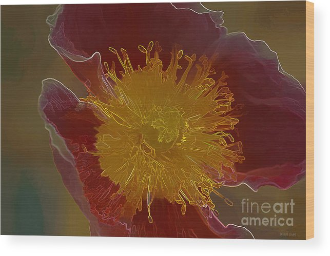 Flower Wood Print featuring the photograph Center Of Yellow by Deborah Benoit