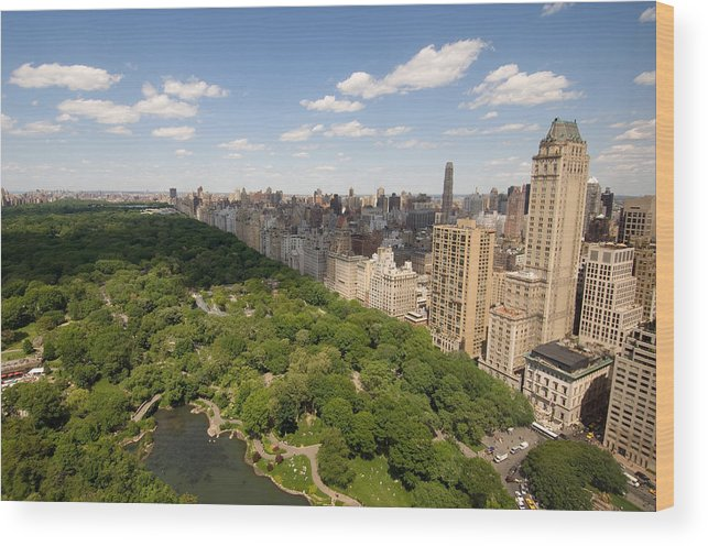 Photography Wood Print featuring the photograph Central Park In New York City by Joel Sartore