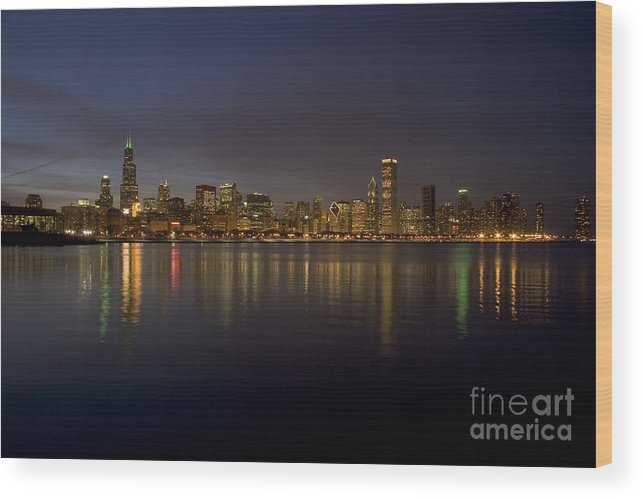 Chicago Wood Print featuring the photograph Chicago Skyline by Timothy Johnson