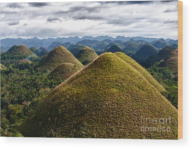 Asia Wood Print featuring the photograph Chocolate Hills by Joerg Lingnau