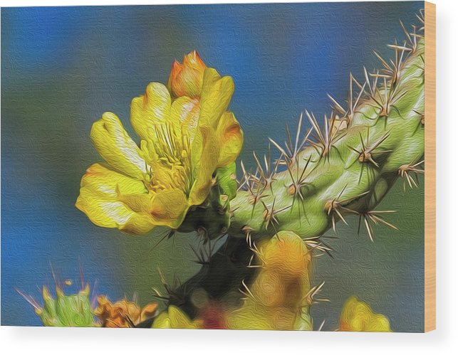 Arizona Wood Print featuring the photograph Cholla Flower Op41 by Mark Myhaver