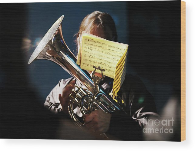 Christmas Wood Print featuring the photograph Christmas Music by Terri Waters