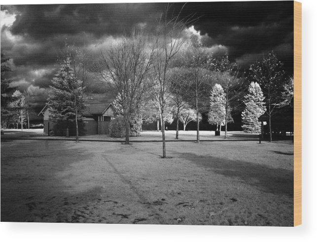 Infrared Wood Print featuring the photograph City Beach In Infrared by Lee Santa