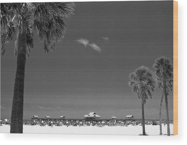 3scape Wood Print featuring the photograph Clearwater Beach Bw by Adam Romanowicz