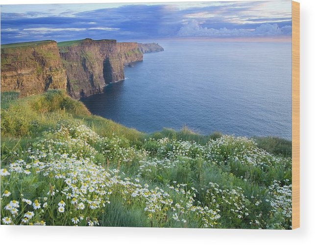 Outdoors Wood Print featuring the photograph Cliffs Of Moher, Co Clare, Ireland by Gareth McCormack